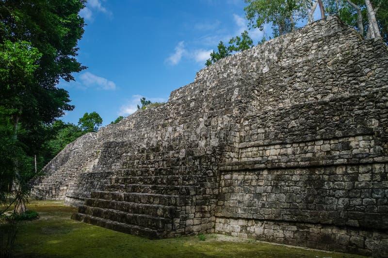 Sikt av den Mayan pyramiden fördärvar in i den arkeologiska Balamken royaltyfria bilder