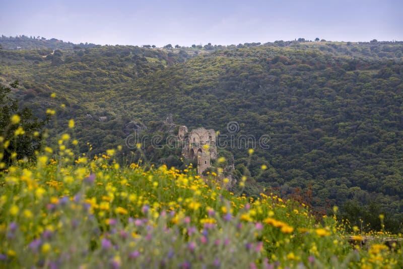 Sikt av den Montfort slotten i bergen av Galilee till och med vildblommorna arkivfoto