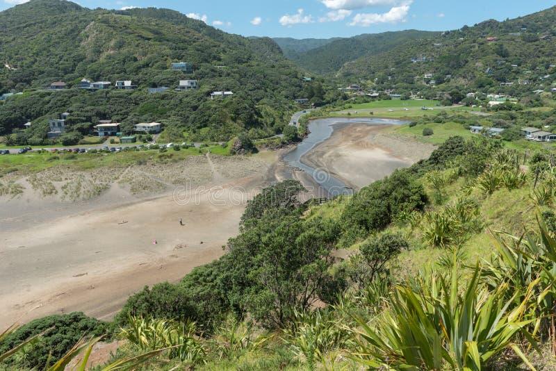 Sikt av den Piha stranden från lutningarna av Lion Rock New Zealand royaltyfri fotografi