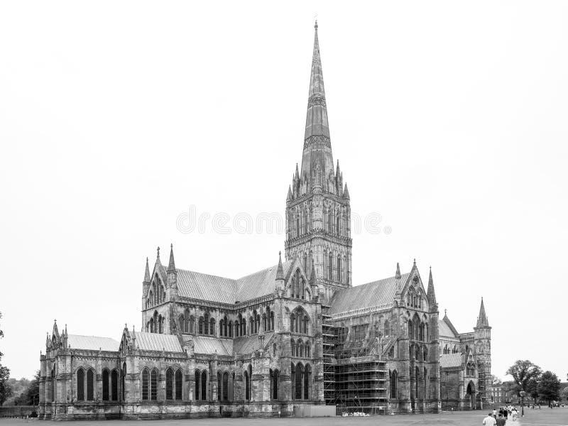 Sikt av den Salisbury domkyrkan från östliga Salisbury, Wiltshire, UK arkivbild