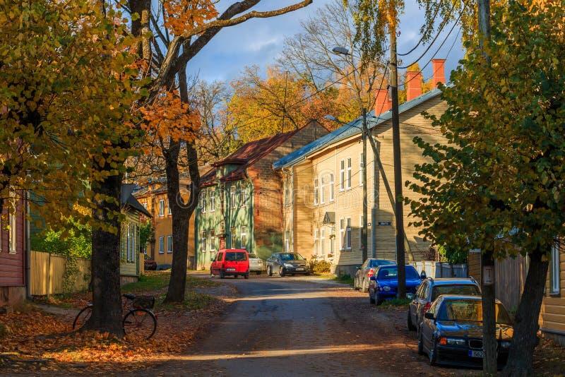 Sikt av den Salme gatan i Tartu, Estland arkivbild