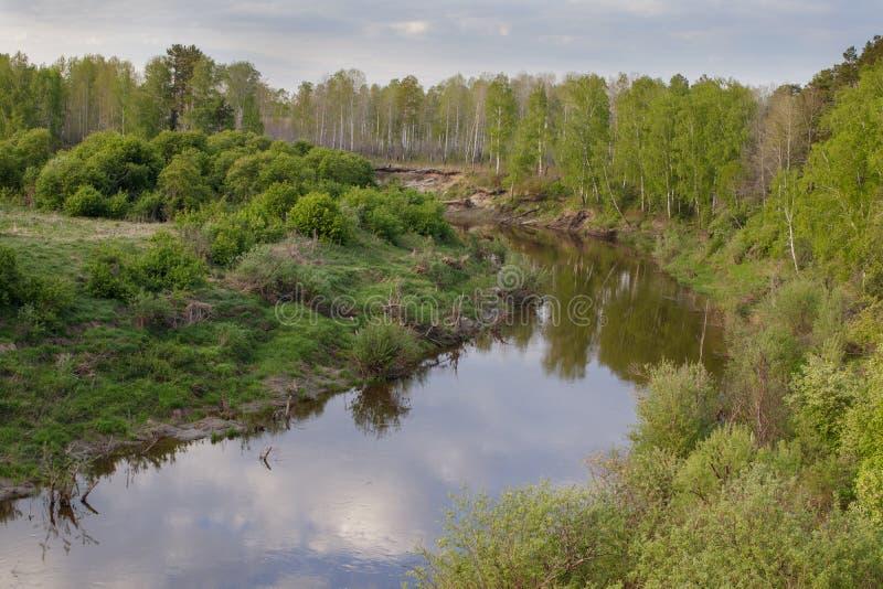 Sikt av den Siberian floden Vagai för taiga skyen f?r showen f?r v?xter f?r r?relse f?r den f?rfallna f?r f?ltet f?r blueoklarhet royaltyfri bild