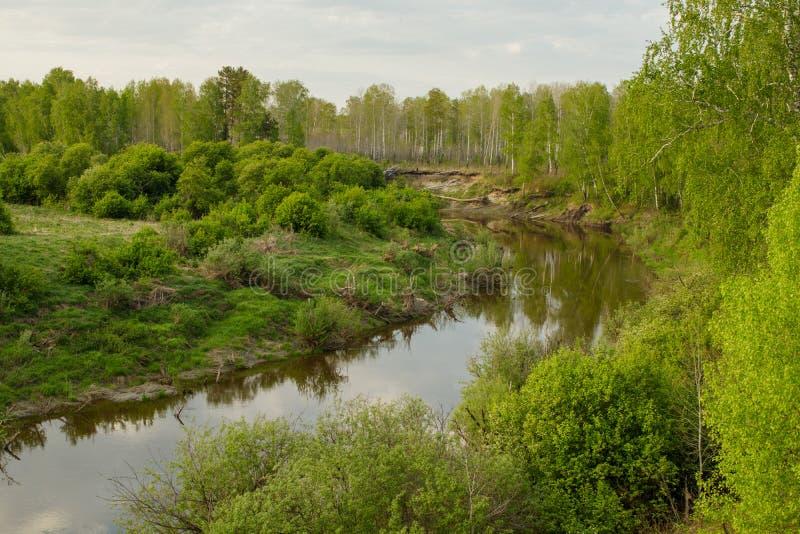 Sikt av den Siberian floden Vagai för taiga skyen f?r showen f?r v?xter f?r r?relse f?r den f?rfallna f?r f?ltet f?r blueoklarhet royaltyfri foto