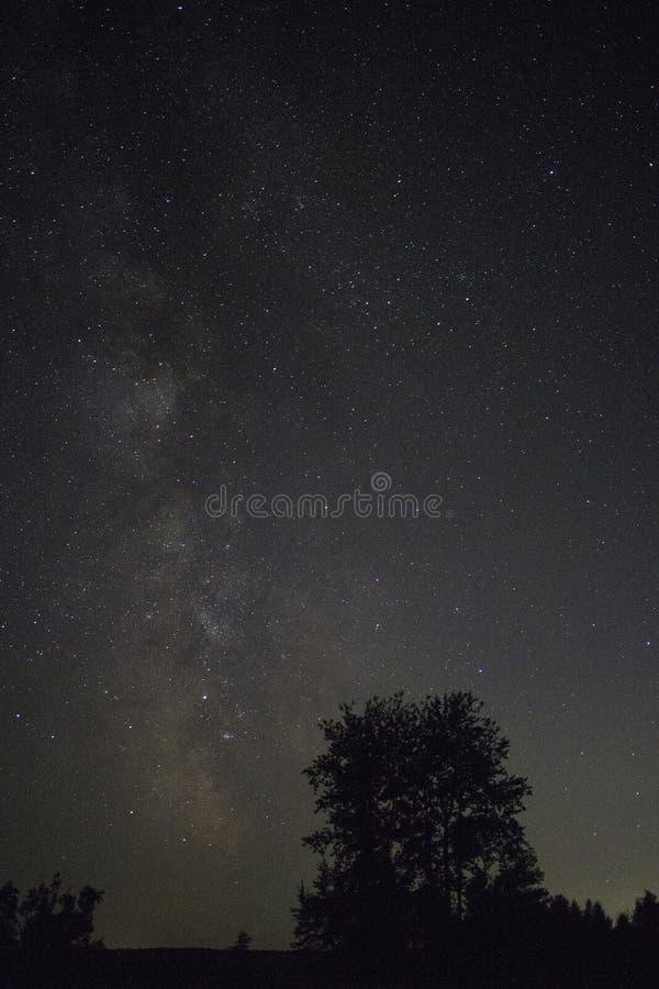 Sikt av den stjärnklara himlen för natt arkivfoto