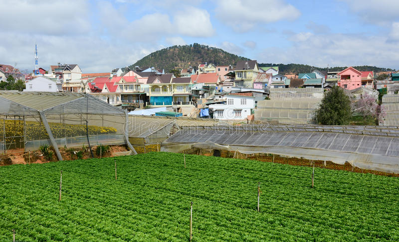 Sikt av den thailändska Phien byn med grönsakfältet i Dalat högländer, Vietnam arkivfoto