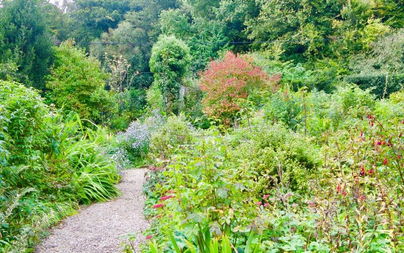 Sikt av den Thomas Hardys stugaträdgården royaltyfri fotografi