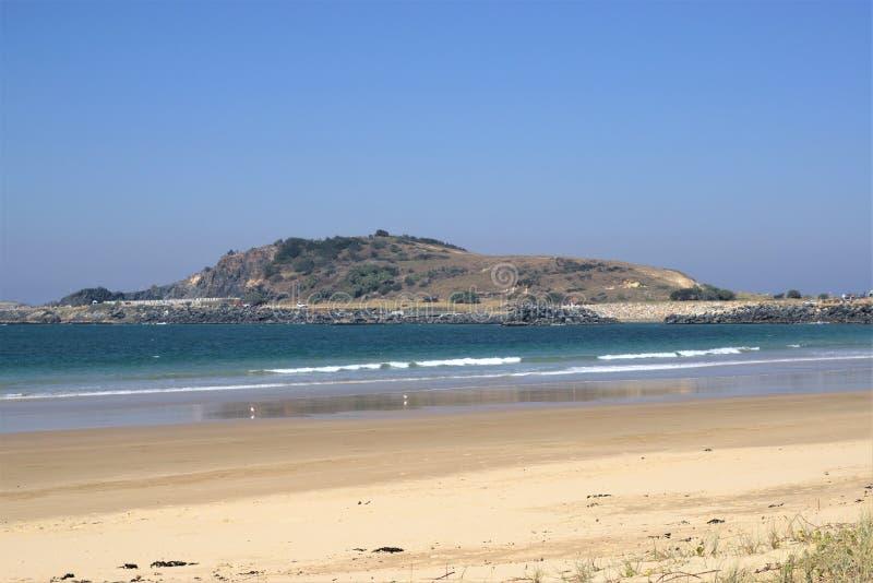 Sikt av den villebrådkullen och vågbrytaren från stranden i Australien royaltyfria foton