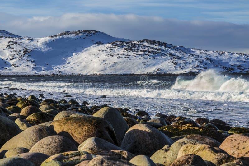 Sikt av det Barents havet på en vinterdag, Murmansk region royaltyfri foto
