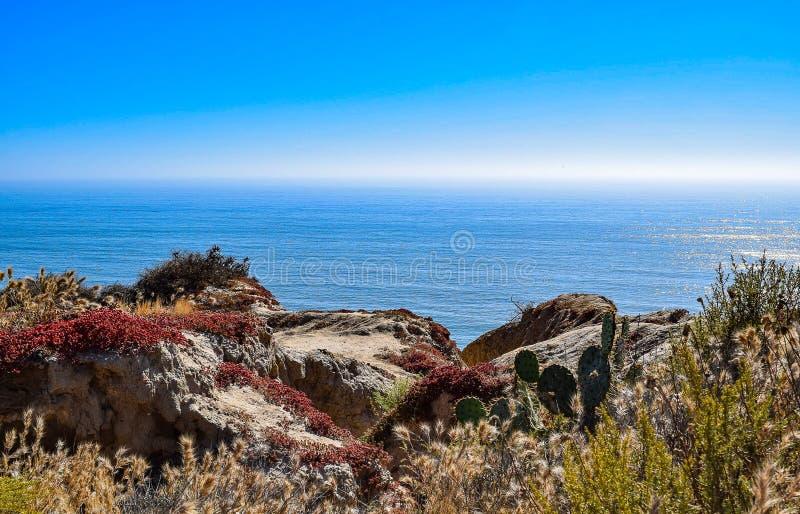 Sikt av det Stillahavs- från Torrey Pines Glider Port i San Diego royaltyfri fotografi