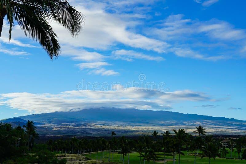 Sikt av en golfbana med berg och palmträd royaltyfria bilder