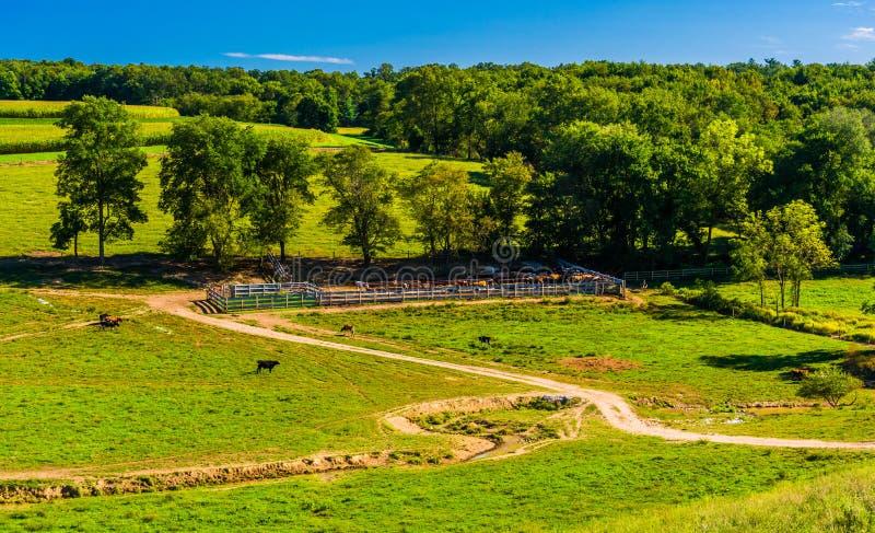 Sikt av en lantgård i lantliga York County, Pennsylvania fotografering för bildbyråer