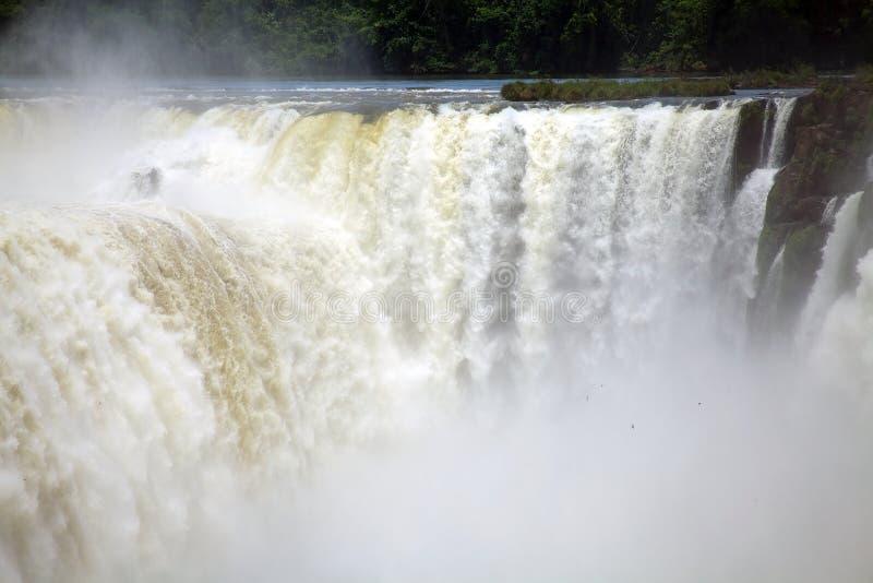 Sikt av ett avsnitt av Iguazuet Falls, från den Brasilien sidan royaltyfri bild