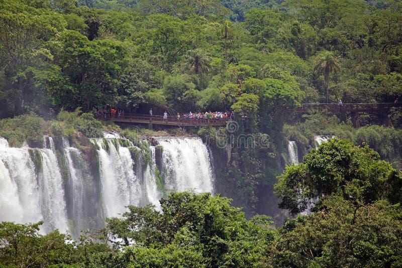 Sikt av ett avsnitt av Iguazuet Falls, från den Brasilien sidan arkivbild