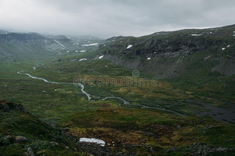 sikt av fältet för grönt gräs med flodströmmen som omges av steniga klippor, Norge, Hardangervidda arkivbild