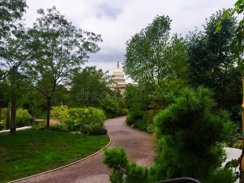 Sikt av Förenta staternacapitolen från botaniska trädgårdarna i Wa arkivfoto