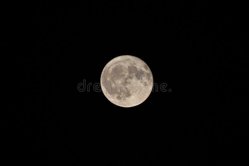 Sikt av fullmånen royaltyfri foto