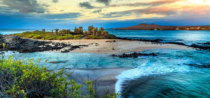 Sikt av Galapagosen royaltyfri foto