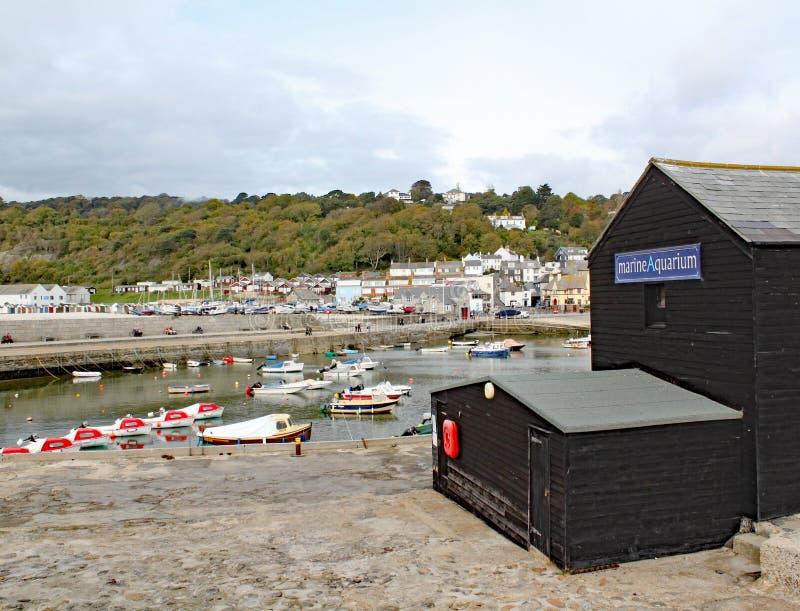 Sikt av hamnen på Lyme Regis som beskådas från slutet av Cobben Marine Aquarium är i förgrunden royaltyfri foto