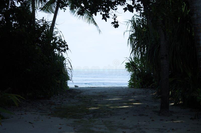 Sikt av Indiska oceanen från en öde ö royaltyfri fotografi