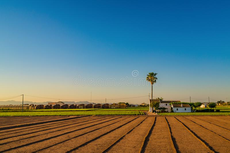 Sikt av jordbruks- fält och byggnader nära Valencia för solnedgång spain royaltyfri foto