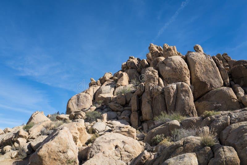Sikt av Joshua Tree National Park Parkera är en amerikansk nationalpark i sydöstliga Kalifornien arkivbilder