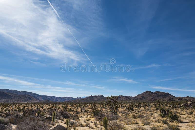 Sikt av Joshua Tree National Park Parkera är en amerikansk nationalpark i sydöstliga Kalifornien arkivbild