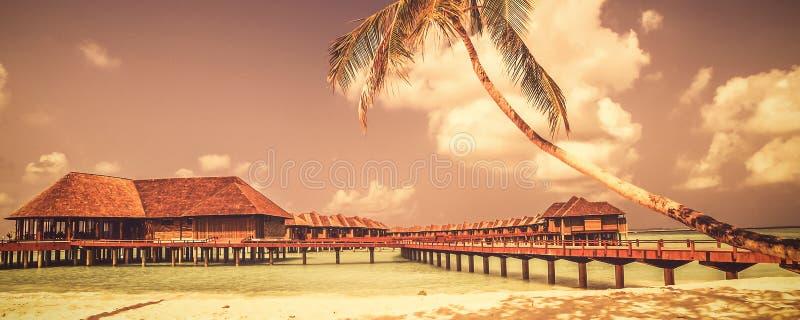 Sikt av kusten av den tropiska ön i det indiska havet med vattenbungalower fotografering för bildbyråer