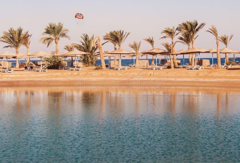 Sikt av lagun, havet, stranden, palmträd och en hoppa fallskärm på su royaltyfri foto