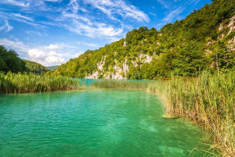 Sikt av landskapet med Plitvice sjöar nationalparken för en sjö, arkivbild