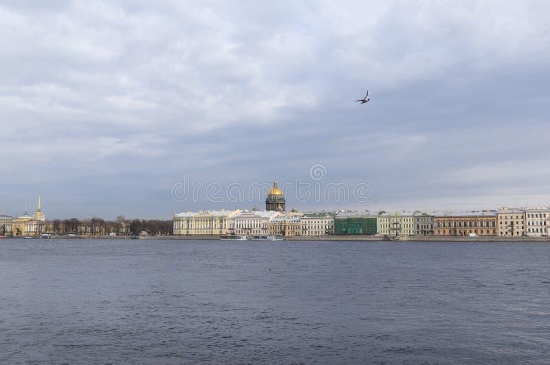Sikt av Nevaen och invallningen i St Petersburg, kupol av domkyrkan för St Isaacs, Seagull i himlen ovanför Nevaen royaltyfri foto