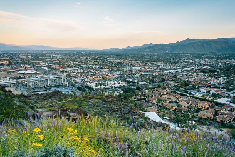 Sikt av Palm Springs på solnedgången, från horisontslingan i Palm Springs, Kalifornien royaltyfri fotografi