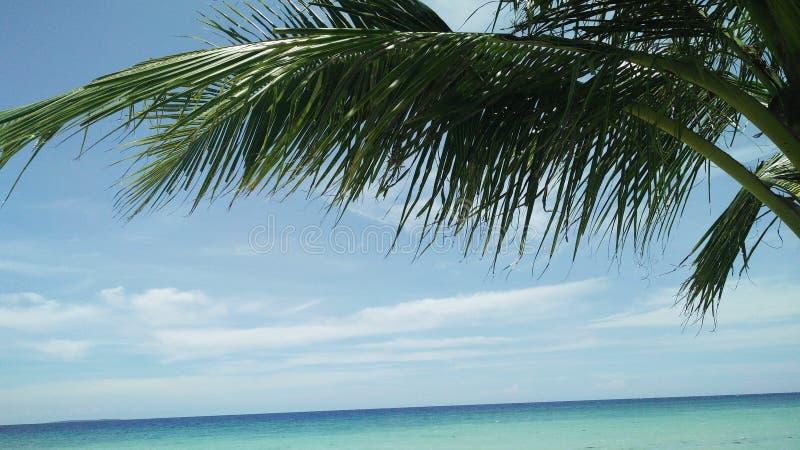 Sikt av paradiset arkivfoto