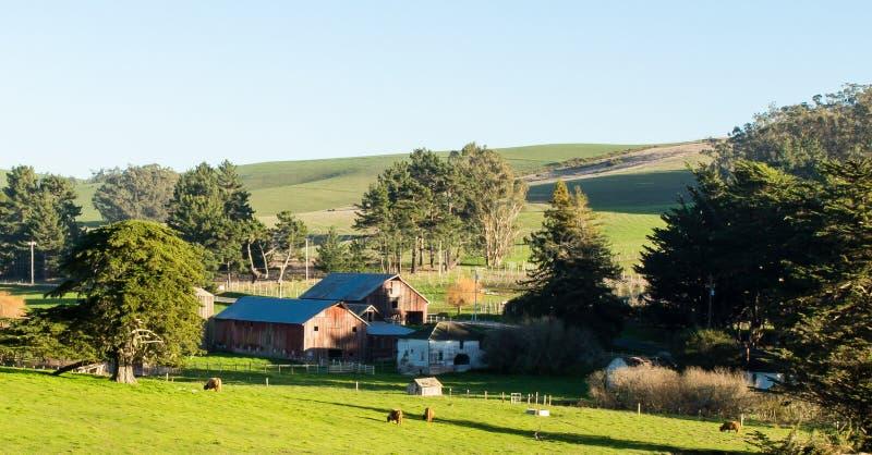 Sikt av ranchen i Tomales Kalifornien på en solig vinterdag royaltyfri fotografi