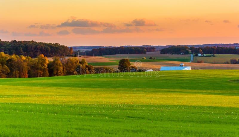 Sikt av Rolling Hills och lantgårdfält på solnedgången i lantliga York Co royaltyfria foton