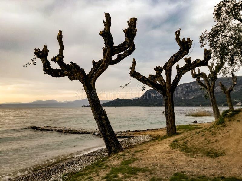 Sikt av sjön Garda från Bardolino, Verona, Italien arkivbild