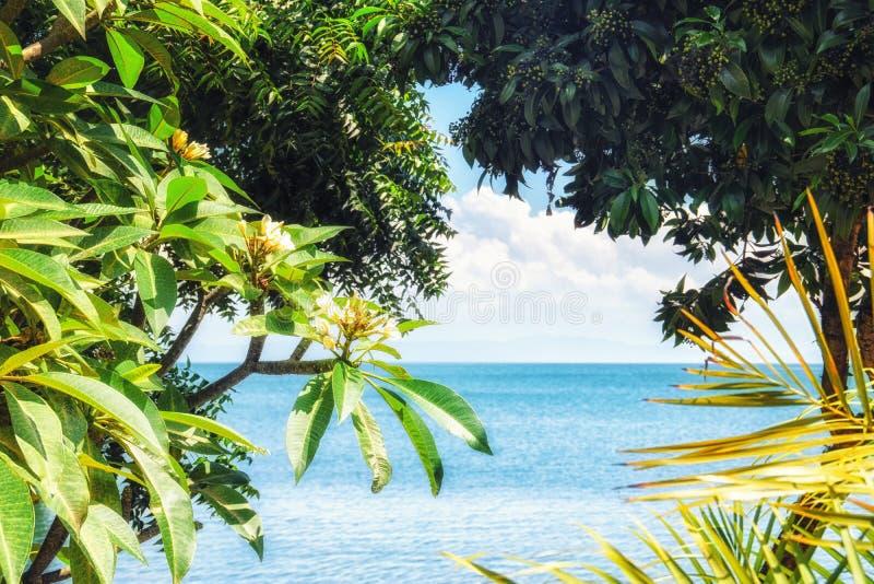 Sikt av sjön Kivu arkivbild