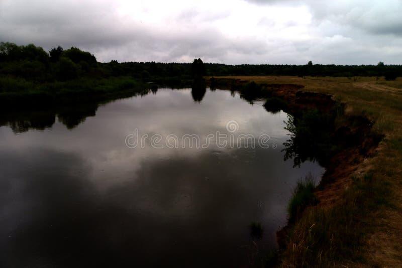 Sikt av sjön och skogen på en molnig dag royaltyfri foto