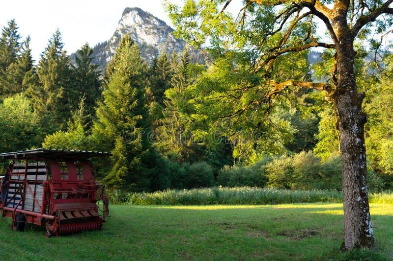 Sikt av skördearbetaren som står på ett slutta fält mot bakgrunden av berg fotografering för bildbyråer