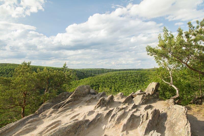 Sikt av skogar från överkant av berget fotografering för bildbyråer
