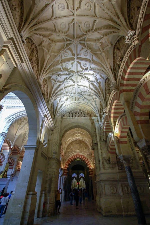 Sikt av skogen av pelare i den stora moskén i Cordoba, Spanien, Andalucia royaltyfri bild