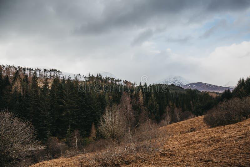 Sikt av skotsk Skotska högländerna nära Fort William, Skottland royaltyfri fotografi