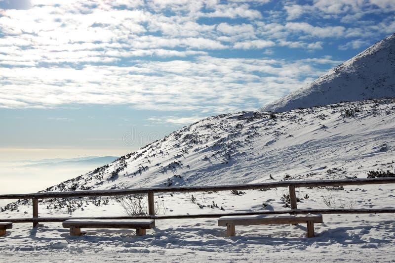 Sikt av solig berglutning n höga Tatras arkivbilder