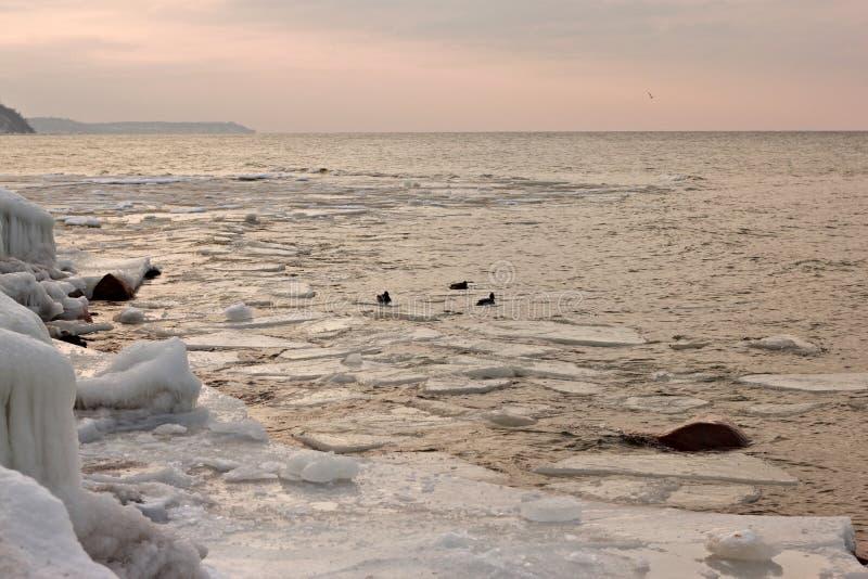Sikt av solnedgången av Östersjön royaltyfri bild
