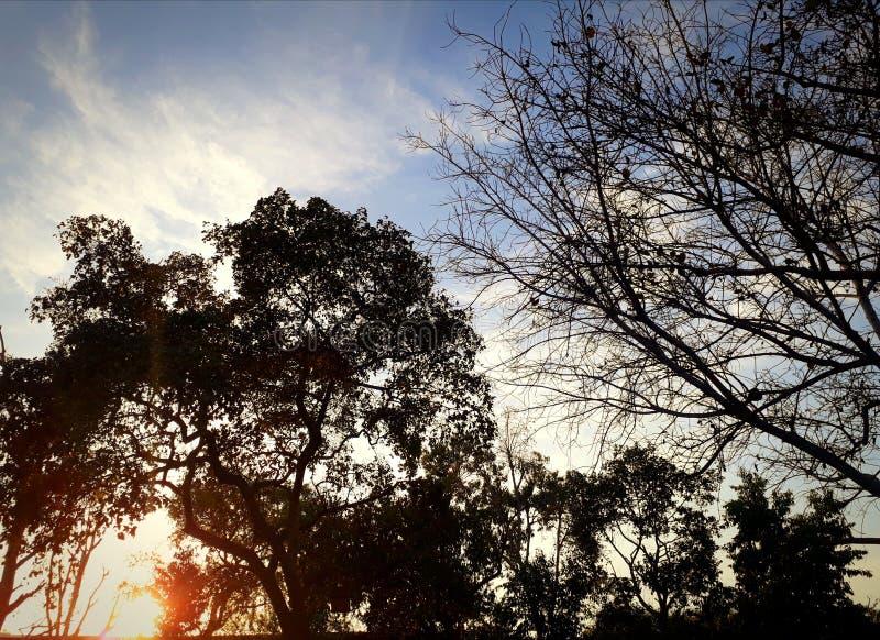 Sikt av solnedgången fotografering för bildbyråer