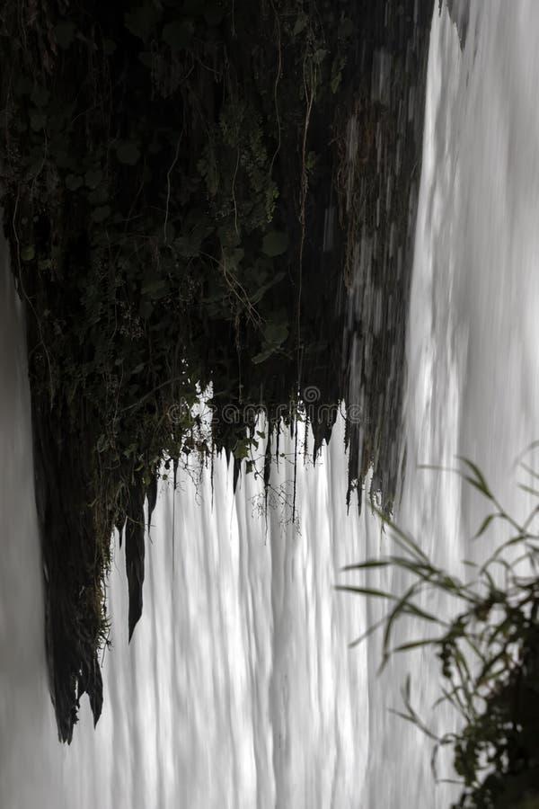 Sikt av strömmarna för vitt vatten av en stor vattenfall till och med vegetationen royaltyfri foto