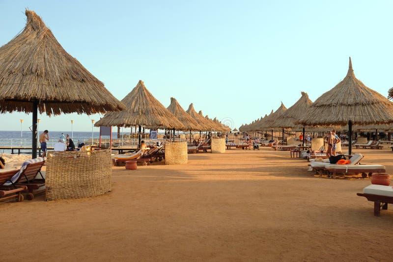 Sikt av stranden med solparaplyer och dagdrivare arkivbild