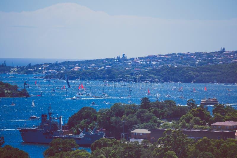 Sikt av Sydney Harbour, närbildskott av kusten och havsdurinen arkivbild