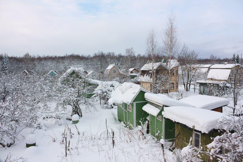 Sikt av trädgårdtäppor i vinter royaltyfria bilder