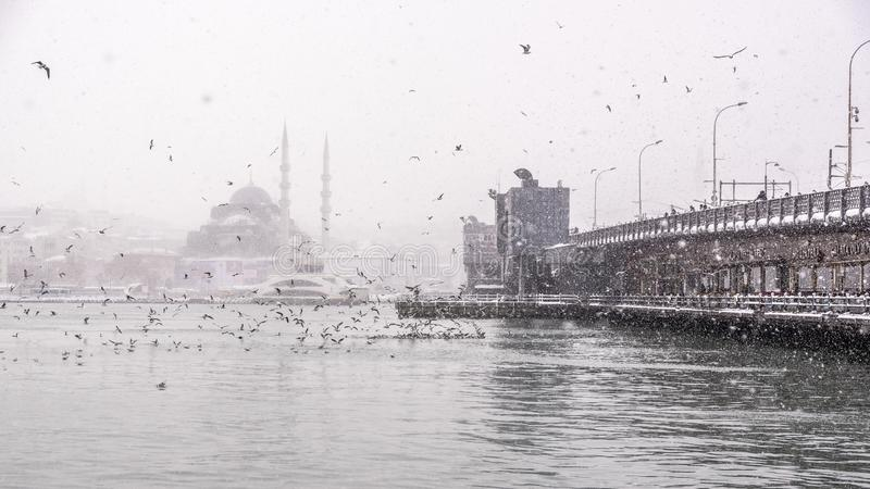 Sikt av tyngst snöfall i Istanbul, Turkiet royaltyfria bilder