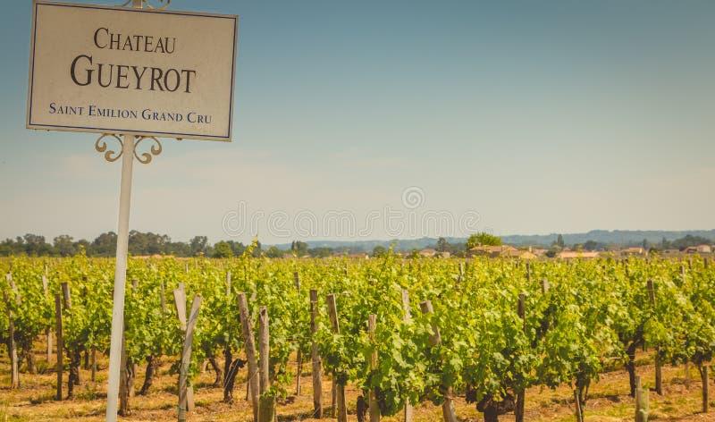 Sikt av vingårdarna av den stora vinproducenten Chateau Gueyrot fotografering för bildbyråer